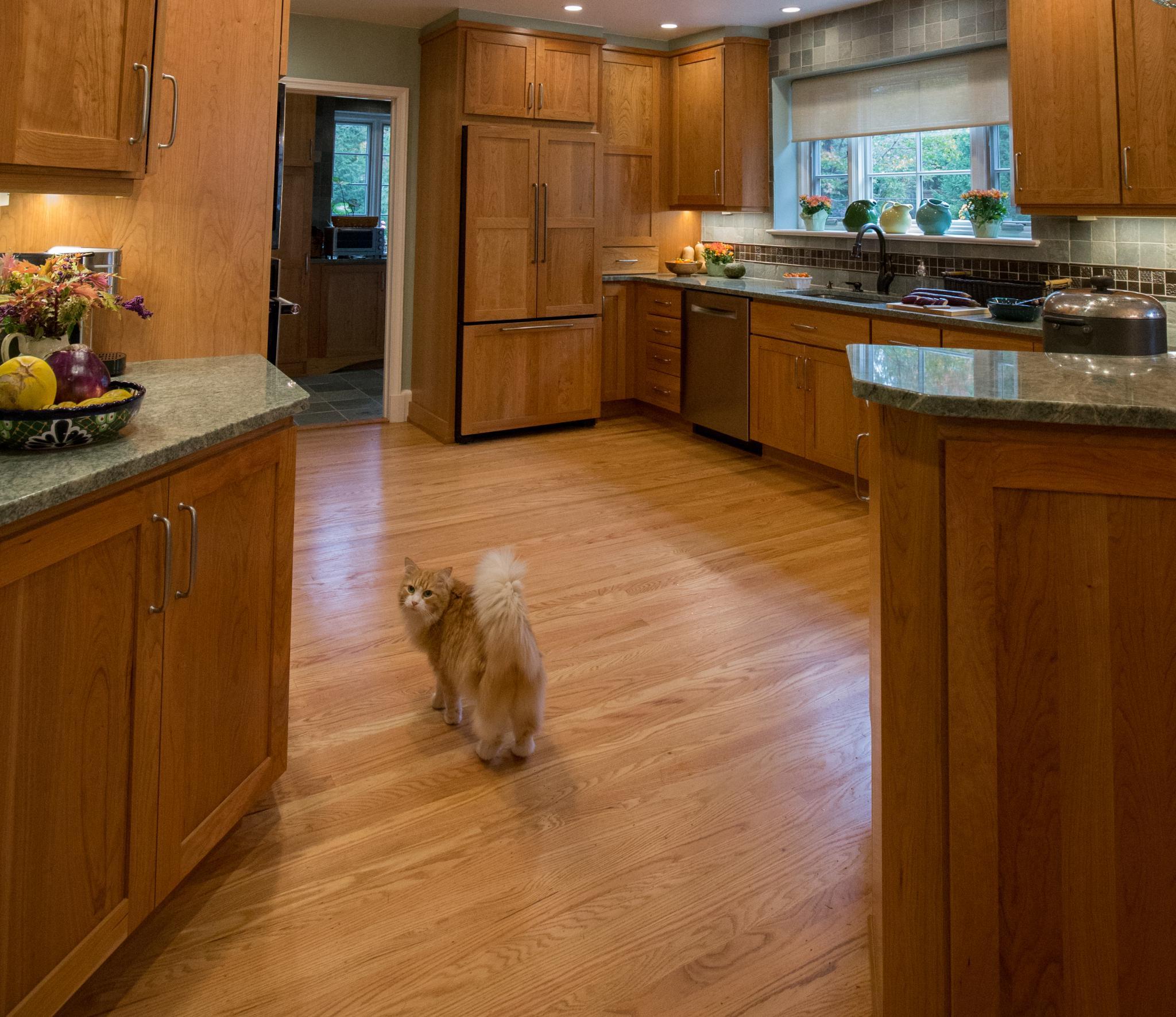 kitchen designer portfolio custom kitchens kitchen